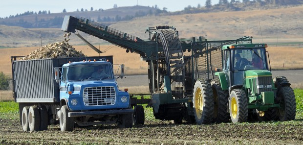Photo of tractor and truck harvesting sugar beets